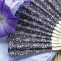 おしゃれなメンズ扇子の人気ブランド。おすすめ通販サイト集【紳士用】